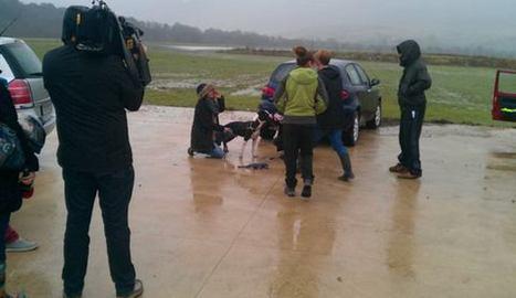 Inundaciones en la perrera de Etxauri