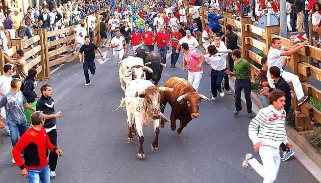 El día de Santiago, 25 de julio, tuvo lugar el primer encierro de las fiestas de Santa Ana en Tudela, que transcurrió sin incidentes. La carrera fue protagonizada por los astados de la ganadería Cebada Gago.