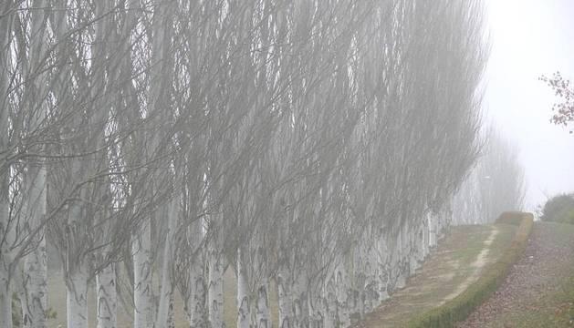 Niebla en Pamplona y Comarca