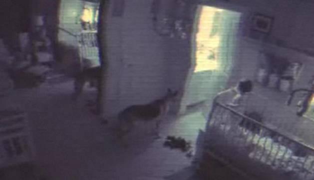 Una escena de Paranormal Activity