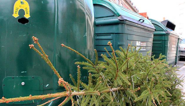 Tras el final de las fiestas, los pinos de Navidad pasan a mejor vida