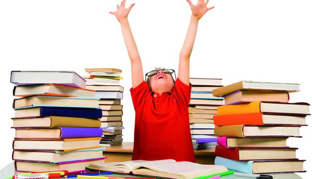 Un total de 508 originales, seis de ellos procedentes de Navarra, concurren a la XX edición del Premio Edebé de Literatura Infantil y Juvenil.