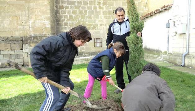 El domingo 11 de marzo se celebró en la localidad navarra de Astráin el Día del Árbol. Una pequeña representación del pueblo participó en la entretenida tarea de plantar árboles como recordatorio de la importancia de proteger las superficies arboladas y, por consiguiente, el medio ambiente. Niños y adultos compartieron pala y regadera para completar un buen trabajo. Como recompensa al esfuerzo, se reunieron en casa de un vecino para degustar un sabroso almuerzo.