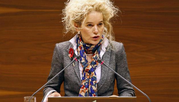 María Victoria Arraiza, en el Parlamento foral