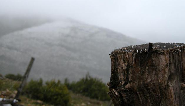 Algunos de los puntos más altos de la Comunidad foral han recibido la presencia de nieve