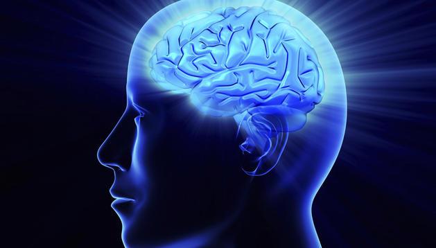 Imagen artifical de un cerebro