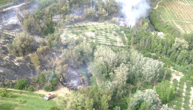 Imágen aérea de la zona afectada por el incendio, en la ribera del río Alhama en el término municipal de Corella, con los bomberos trabajando para extinguir las llamas