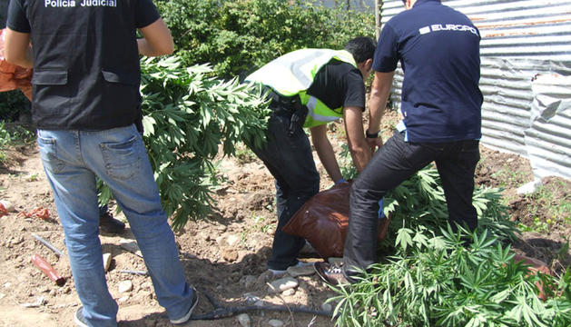 Desarticulada una organización que utilizaba conservas de productos de la ribera navarra para traficar con droga