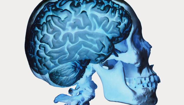 Imagen en tres dimensiones de un cerebro humano