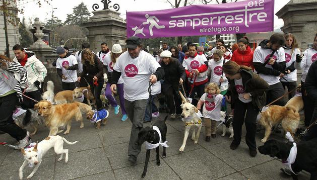 Salida de la segunda edición de 'La Sanperrestre', carrera popular para madrileños con sus perros organizada por la asociación El Refugio