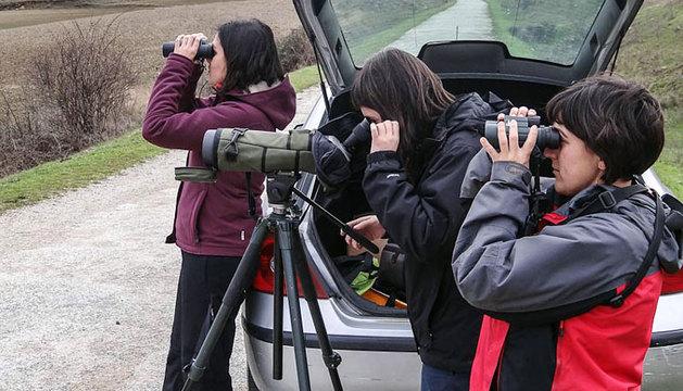 Varias personas observan el paso de las aves.
