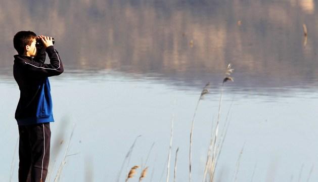Un joven usa los catalejos para observar las aves en la laguna de Pitillas