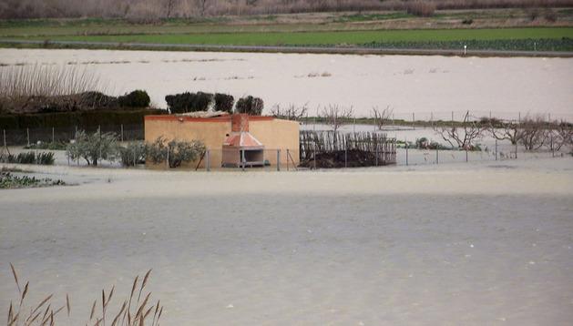 La zona de la Huerta de Ribaforada ha vuelto a inundarse y ayer presentaba este aspecto