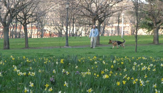 Una persona pasea en primavera en Pamplona.