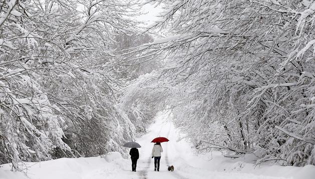 Dos jovenes pasean con su perro por una carretera cercana a la localidad de Roncesvalles con los árboles cubiertos de nieve