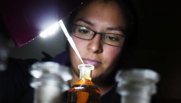 Una investigadora trabajando en su laboratorio