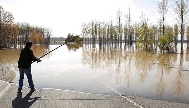 Desbordamiento del Ebro en Castejón