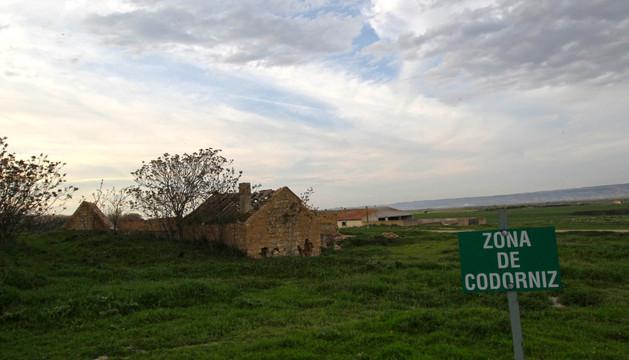 Una señal marca una zona de caza de codorniz en el coto de Montes de Cierzo de Tudela