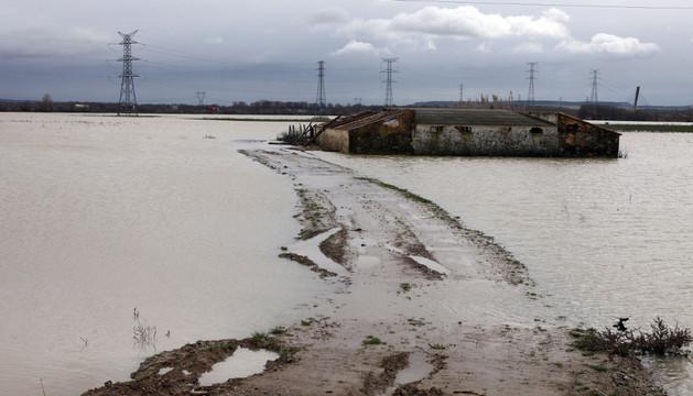 El río Ebro inundó este invierno los campos de Valtierra.