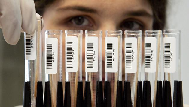 Fotografía fechada el 18 de enero de 2005 que muestra a una investigadora durante la realización de pruebas de ADN en un laboratorio de Fráncfort (Alemania)