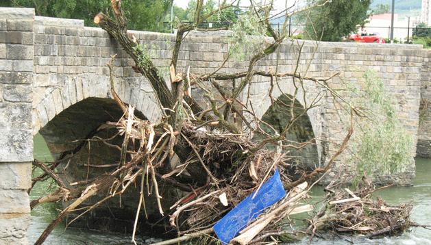 Restos vegetales amontonados en el Puente Viejo de Burlada