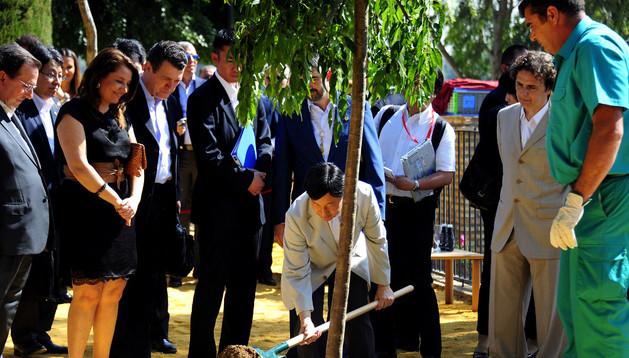Naruhito planta el cerezo en Coria