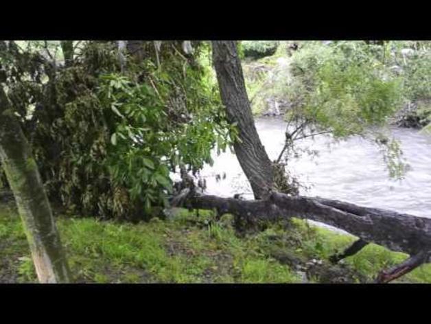 Inundaciones del Arga - Tramo 4: Puente de la Magdalena - Puente de la Rochapea