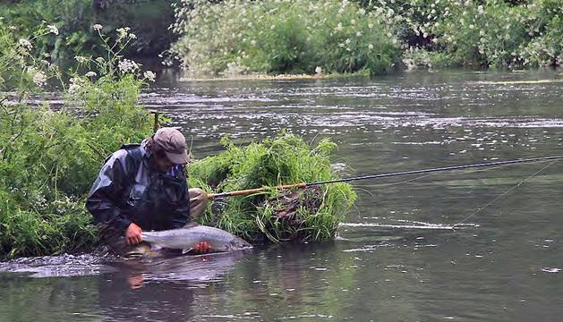 Un pescador devuelve un salmón al río Bidasoa.