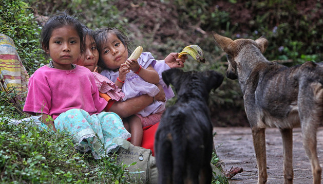 Niñas indígenas de la etnia Tolupán en la montaña de La Flor (Honduras).