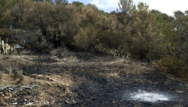 Vista de la zona de Andratx (Mallorca) donde comenzó el pasado viernes el incendio de la Sierra de la Tramuntana.
