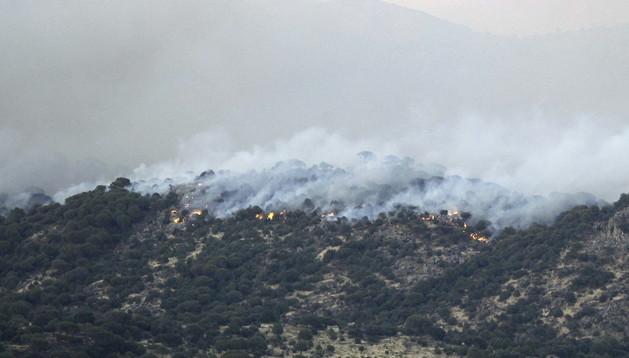 Fuego declarado este sábado en Cebreros (Ávila), que la Junta de Castilla y León ha declarado el nivel 2 de peligrosidad.