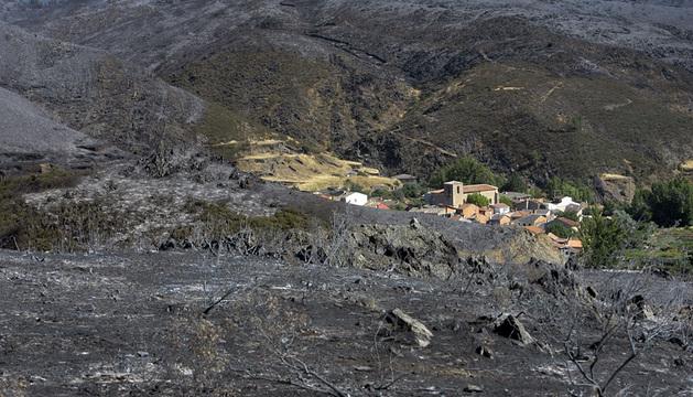 Aspecto de la zona afectada por el fuego en Guadalajara.
