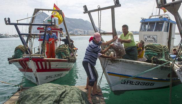Pescadores españoles faenan en Algeciras.