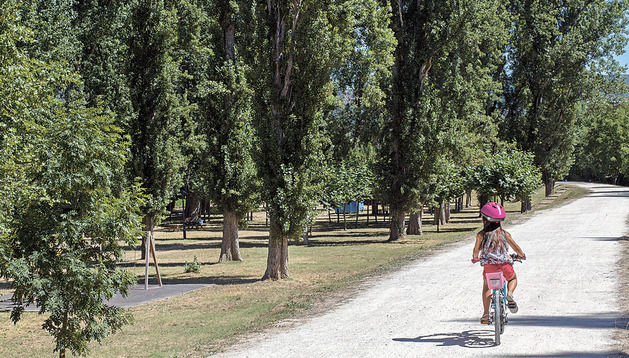 Entorno del parque fluvial, en el parque de la Nogalera de Burlada, donde se han instalado varios refugios para murciélagos
