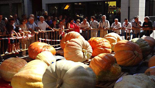 Las calabazas gigantes de la Feria en Valtierra.