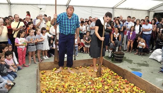 Machacado tradicional de la manzana para la elaboración de sidra.