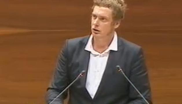 El portavoz de Bildu en el Parlamento foral, Maiorga Ramirez.