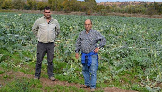 Juan César Donoso Arévalo y Juan Antonio Gil Santolaya delante de la pieza de cardos en Calahorra