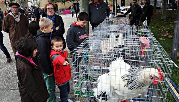 Varios niños observan un puesto de venta de gallos y gallinas ayer en Urroz-Villa