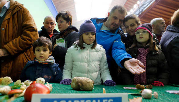 Varios niños observan con atención un conjunto de hongos de la orden Agaricales