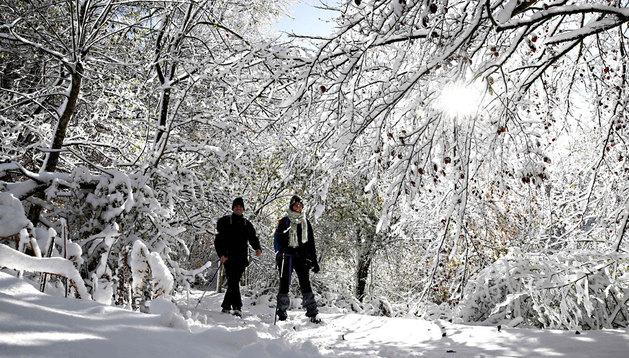 Dos personas, paseando por el bosque en el alto de Mezkiritz (valle de Erro)