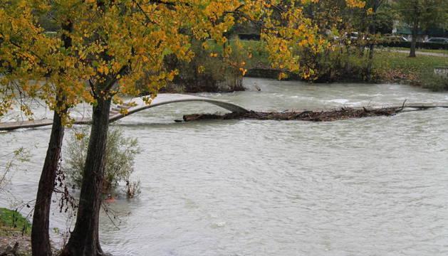 La alerta por nieve se complica este jueves y viernes en Navarra. Así lo advierte la AEMET, que mantiene activada la alerta amarilla en la vertiente cantábrica y el centro de la Comunidad. Además, las lluvias están siendo las protagonistas en varias zonas de Navarra durante las últimas horas.