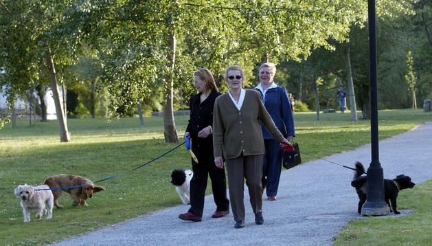Los ciudadanos que transiten con perros sin sujeción podrán ser sancionados con multas de entre 60 y 600 euros.
