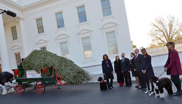 Michelle Obama y sus hijas Malia (dcha.) y Sasha, junto a sus perros Bo y Sunny, reciben el pino que lucirá en el Salón Azul de la Casa Blanca esta Navidad.