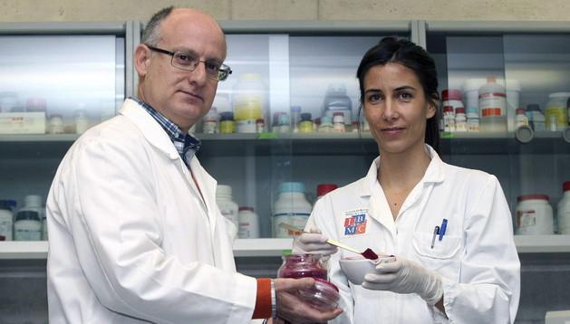 Los biólogos moleculares María Herranz y Vicente Micol (en la imagen), del Instituto de Biología Molecular y Celular (IBMC).