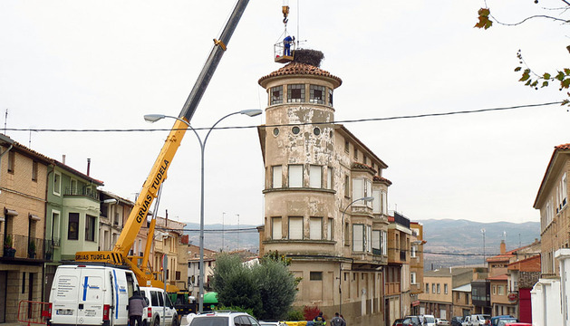 Imagen de los trabajos para retirar el nido del edificio con una grúa de grandes dimensiones.