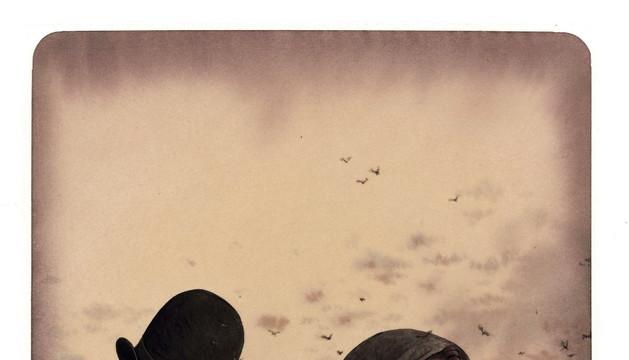 Una de las imágenes de Rebeca Dautremer en la reedición de 'Seda', de Baricco