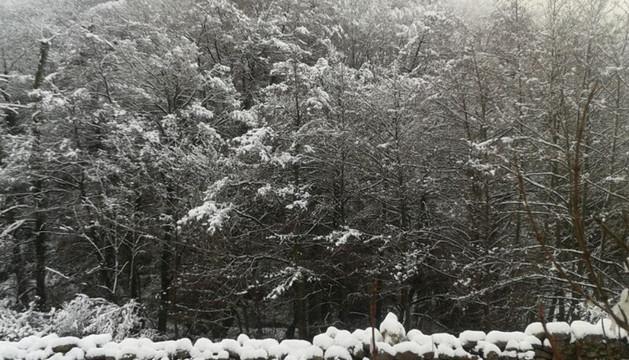 Lantz amanece con nieve.