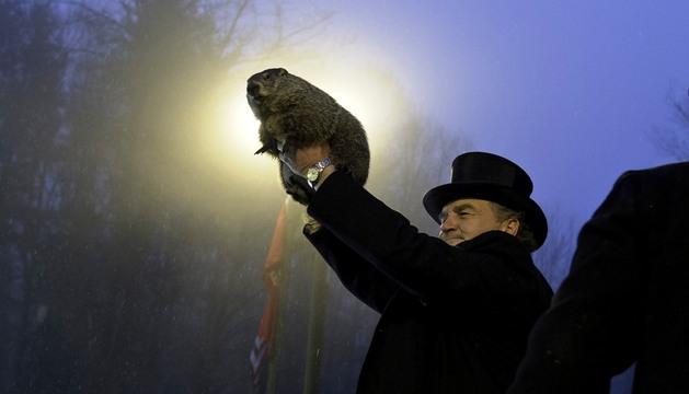 John Griffiths muestra al público la marmota Phil