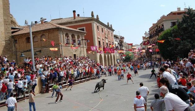 Una imagen del toro con soga por las calles de Lodosa.